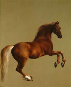 George Stubbs Whistle Jacket Giclee Art Paper Print Poster Reproduction