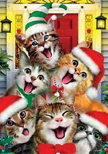 "Christmas Cat Selfie House Flag Large 40"" x 28"""