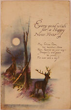 Raphael Tuck & Sons Happy New Year Water Colour Postcard N4068 1924 Gamlingay