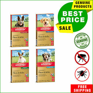 Advantix for Dogs 3 Pipettes Flea and Tick Treatment for dogs All Sizes