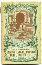 Protesta del popolo delle Due Sicilie - Luigi Settembrini. Organizzazione e
