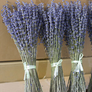 100/200g Dried Natural Lavender Flowers Bouquet Plant Bunch Grass Home Party DIY