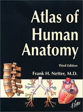 Atlas Of Human Anatomy - Frank H Netter