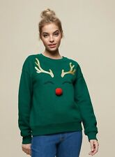 Dorothy Perkins Womens Petite Green Rudolf Jumper Christmas Sweater Pullover Top