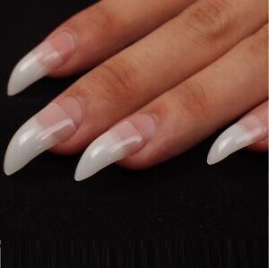Natural Stiletto Nail Tips Long Curved Claw Acrylic Half Well Pointed gel art