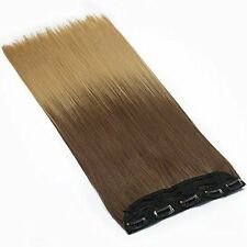 Ombré Long Straight Hair Extensions