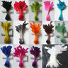 gooses tripped feathers 6-8 inches / 15-20 cm 14 colors /Millinery/Clot​hing/M