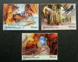 *FREE SHIP Malaysia Caves 2019 Bird Nest Fish Insect Sabah Tourism (stamp) MNH