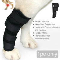 Extra Supportive Dog Canine Rear Leg Hock Joint Wrap Protects Wounds Protect