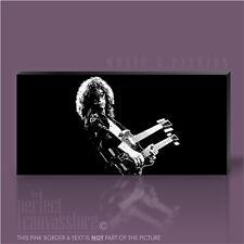 JIMMY PAGE ROCK GUITAR LEGENDS PICTURE ICONIC CANVAS POP ART PRINT Art Williams