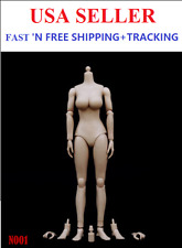 ZY TOYS 1/6 Scale LARGE Bust PALE skin tone female body N001