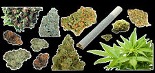 Weed Marijuana Cannabis Vinyl Sticker Bud Pack #1
