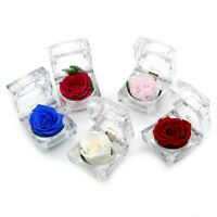 Immortel Préservé Frais Fleur Rose Anneau Boîte De Mariage Éternelle Valent FE