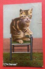 CPA. 1910. THE CHAIRMAN. Chat assis sur un fauteuil.
