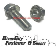 (100) 1/4-20x3/4 Serrated Hex Head Flange Bolt / Cap Screws 1/4 x 3/4 With Nuts