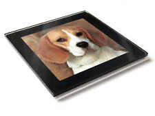 BEAGLE Dog Puppy Premium Glass Table Coaster with Gift Box