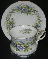 CUP & SAUCER  Rosina/Queen's Wild Flowers Morning Glory Fine Bone China Footed.