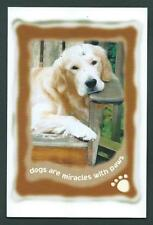 Canada - Guide Dog Postal card - # 2266 First Day Issue