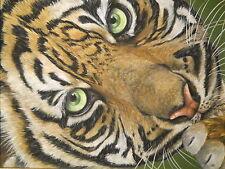 Tiger Cat animal Wildlife painting