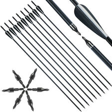 """12X 31"""" Fiberglass Arrows Archery Hunting Target Compound Bow Screw-in Tips"""