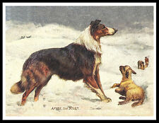 ROUGH COLLIE AND LAMB IN SNOW GREAT VINTAGE STYLE DOG PRINT POSTER