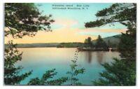 Hiawatha Island, Star Lake, Adirondack Mountains, NY Hand-Colored Postcard