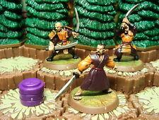 Tagawa Samurai - Heroscape Zanafor's Discovery