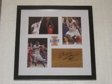 Aaron Jordan Signed Floorpiece Framed Illinois Basketball COA Autograph