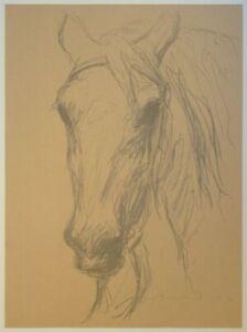 Pferdeportrait - Otto Dill - Kreidelithographie Skizze Studie Bildnis Kopf 1930