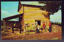 Rural Life Stringing Tobacco at Harvest time Postcard