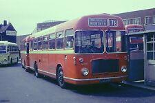 RED & WHITE LAX106E 6x4 Quality Bus Photo