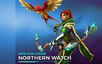 Paladins | Cassie Northen Watch Skin | Digital Code | Only for PC