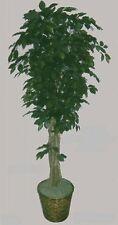 """Artificial 78"""" Ficus Tree Plant Bush Basket Arrangement Topiary Flower Palm Ivy"""