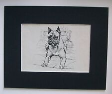 Boxer Dog Print Gladys Emerson Cook Lounging On Bed 1945 Bookplate 8x10 Matted