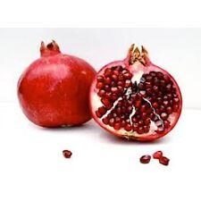 Pomegranate Noir - 2360 - 2 oz (60 ml) -Premium Fragrance Oil -High Concentrated
