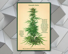 Quotes vintage cannabis wall digital file art print poster marijuana botanical