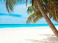 NATURE LANDSCAPE TROPIC PALM BEACH SEA BLUE POSTER ART PRINT PICTURE BB1515A
