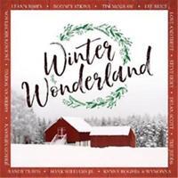 WINTER WONDERLAND Various Artists CD NEW Christmas Tim McGraw Lee Brice Judds