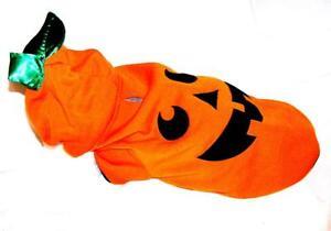 Animal Welfare League Benefit Costume Parade Halloween SIZE XXS PUMPKIN HOODIE