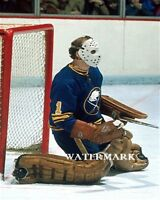 NHL 1970's  Buffalo Sabres Roger Crozier Game Action Color 8 X 10 Photo Picture