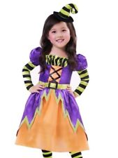 Toddler Girls Miss Mystical Witch Costume With Dress & Hat 2T