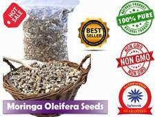 Moringa Oleifera Seeds 100% Natural Raw Organic High Herb Non-Gmo Vitamins Pure