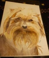 Yorkshire Terrier Art Print A4 from Watercolour Bargain Price Surplus Stock