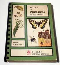 TAVOLE DI ZOOLOGIA INVERTEBRATI, prima edizione Atlanti Scientifici Giunti 1969