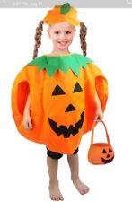 Marian Toddler Pumpkin Costume