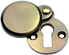 Antique Brass Victorian Door Key Covered Escutcheon XL624)