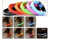 leuchtendes Hundehalsband, LED Leuchthalsband, USB aufladbar, Leucht, Sicherheit
