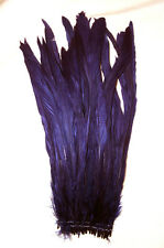 """25 Regal Purple Rooster Coque Tail Feathers Bleached & Dyed  12-14"""" L"""