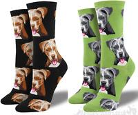 Childrens Socksmith /'Dino-Mite/' socks 3 PACK Dinosaur lover gift stocking filler