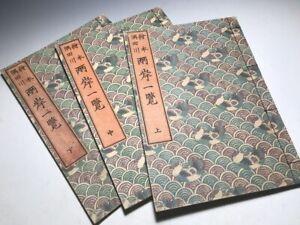 HOKUSAI Ehon Sumidagawa Ryogan Ichiran Japan Original Woodblock Print 3 Book